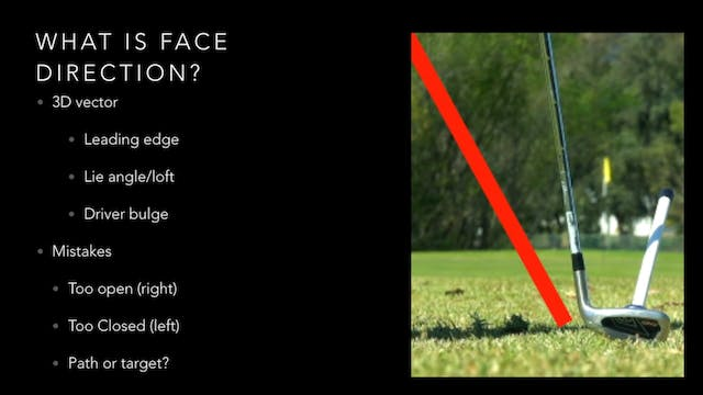 Face Direction Summary