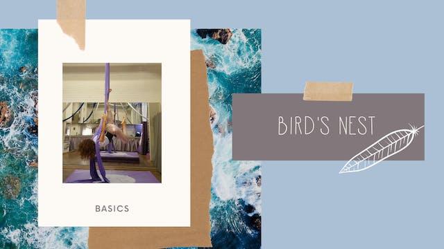 Trick: Birds Nest (B-I)