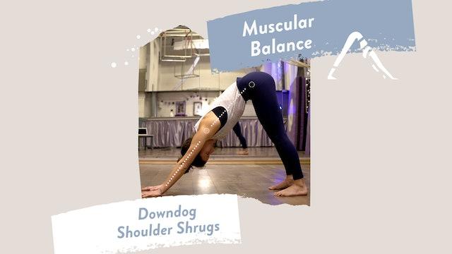 Downdog Shoulder Shrugs (aka Downdog for aerialists or handstand training)