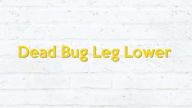 DEAD BUG LEG LOWER