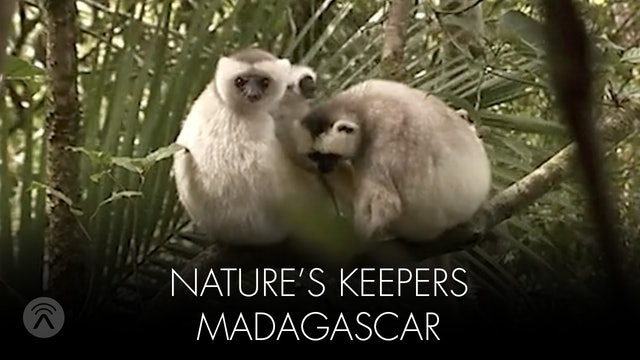 Nature's Keepers Madagascar