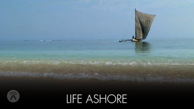 Life Ashore