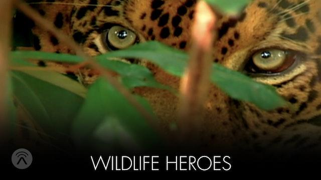 Wild Life Heroes