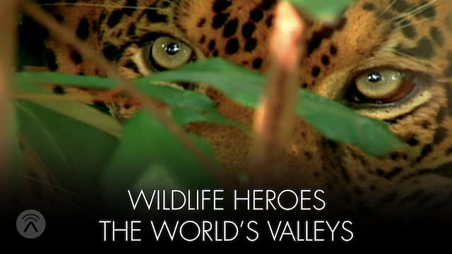 Wild Life Heroes World's Valleys