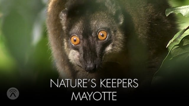 Nature's Keepers Mayotte