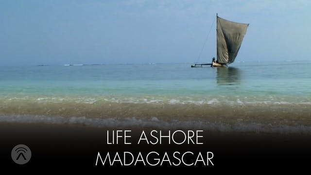 Life Ashore Madagascar