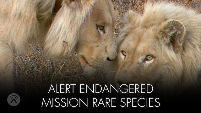 Alert Threatened Species Mission Rare Species