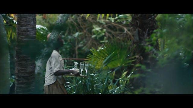 Whistler's Lane Trailer