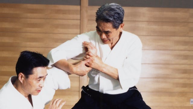 Nishio Aikido: Part 2 Aihanmi Katated...