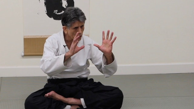 Stanley Pranin: The Essence of Aiki