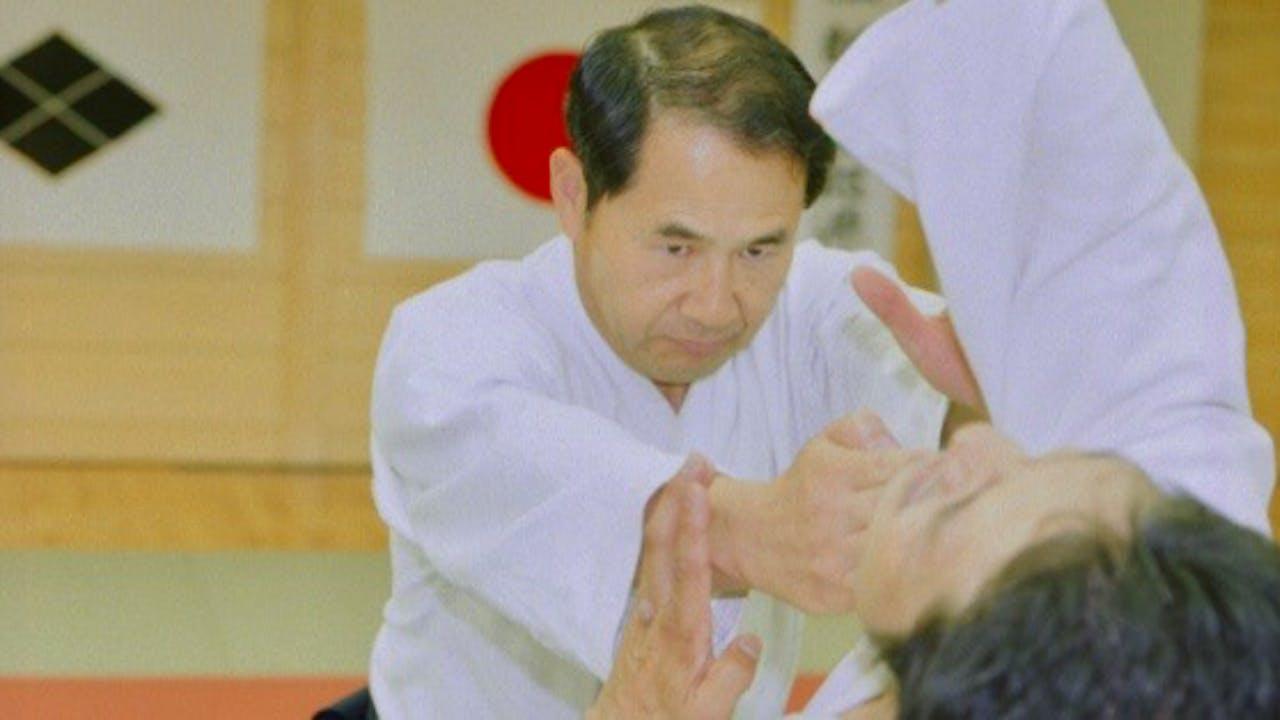 Daito-ryu Aikijiujitsu