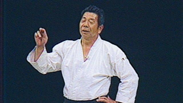 Morihiro Saito: 1985 Friendship Demonstration