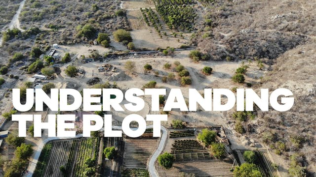 Understand the Plot