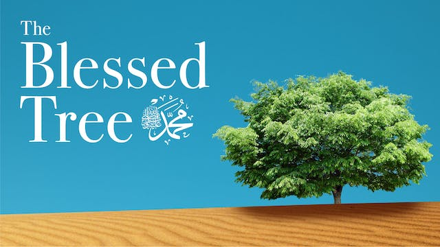 The Blessed Tree | Clip