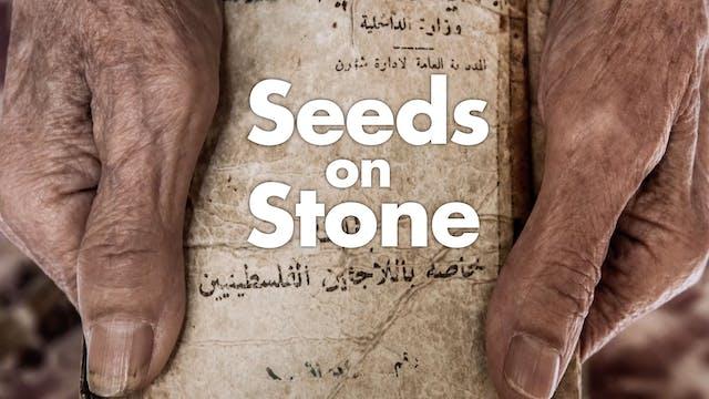 Seeds on Stone