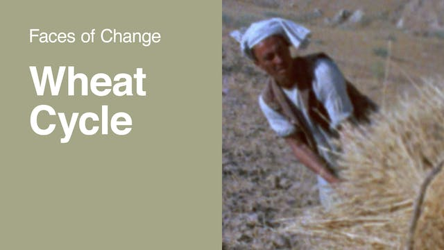 Faces of Change | Wheat Cycle