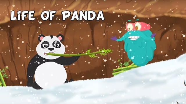 Life Of Panda