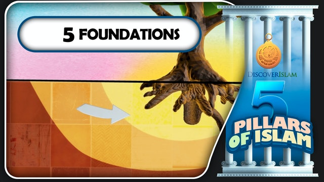 5 Foundations