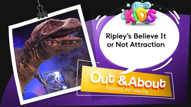 Ripley's Believe It or Not Attraction