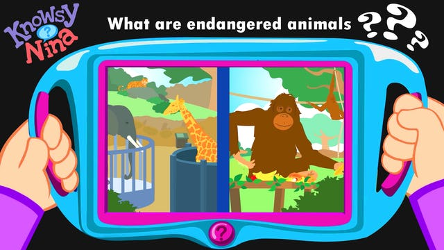 What are endangered animals?