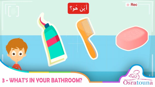 3 - What's in Your Bathroom?