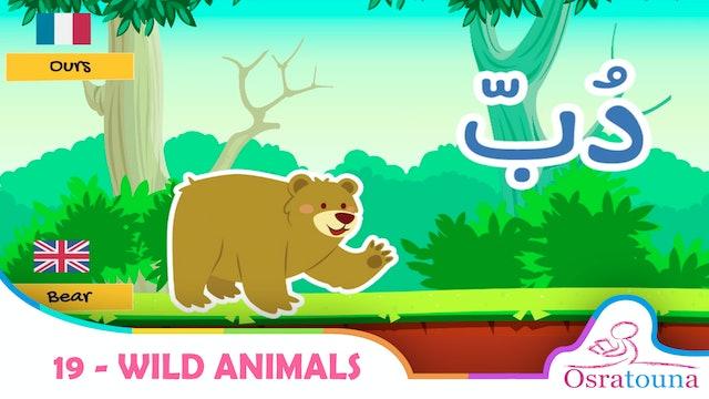 19 - Wild Animals