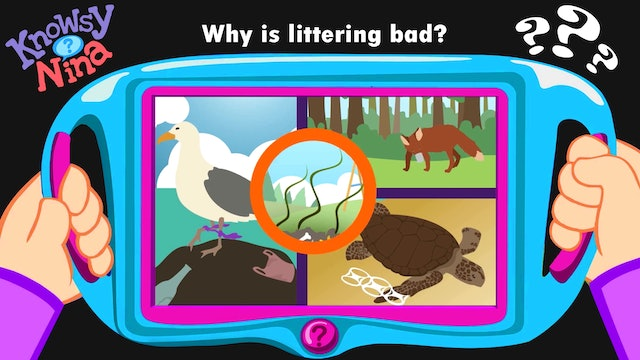 Why is littering bad?