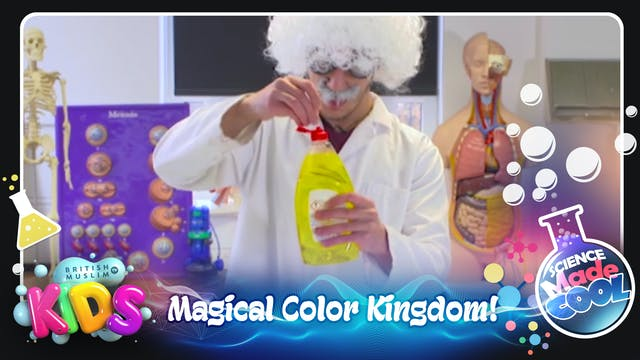 Magical Color Kingdom!