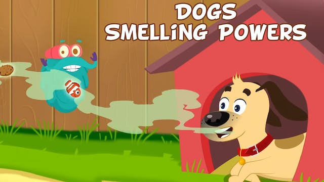 Dogs Smelling Powers