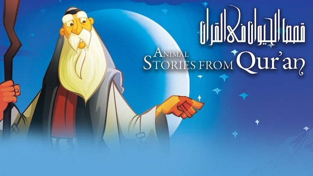 Animal Stories from Quran