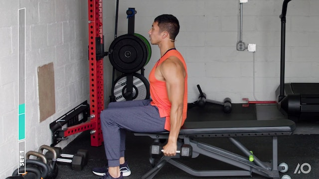 Never-Rest Single-Arm Biceps Sprint Session