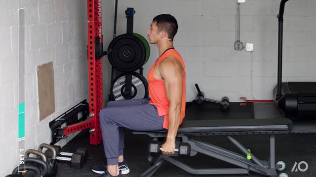 Never-Rest Single-Arm Biceps Sprint S...
