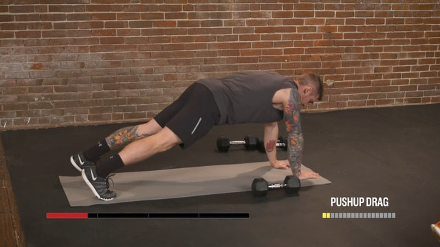 Anarchy 10: Chest & Back