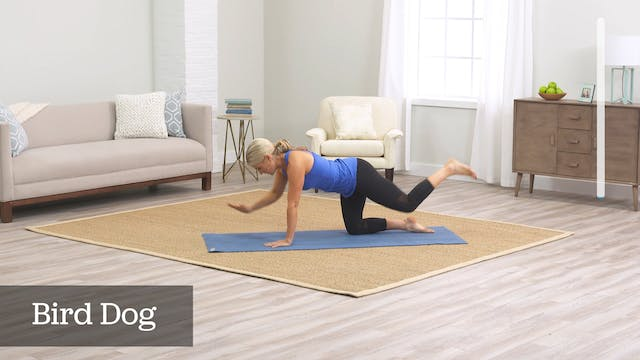 Toning Transformation: Belly Burn