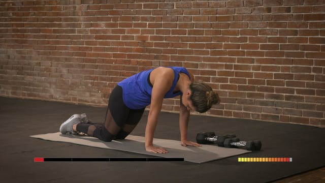 Anarchy Abs: Upper Body