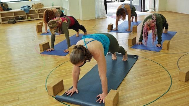 Yogi Strength at Elk Rock Yoga