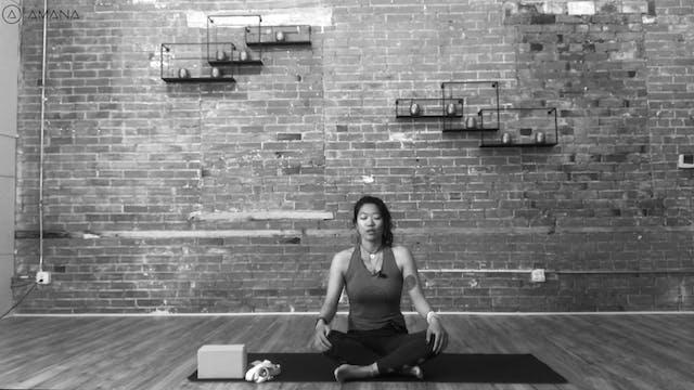 Hatha Yoga- Svarga Dvidasana (Bird of...