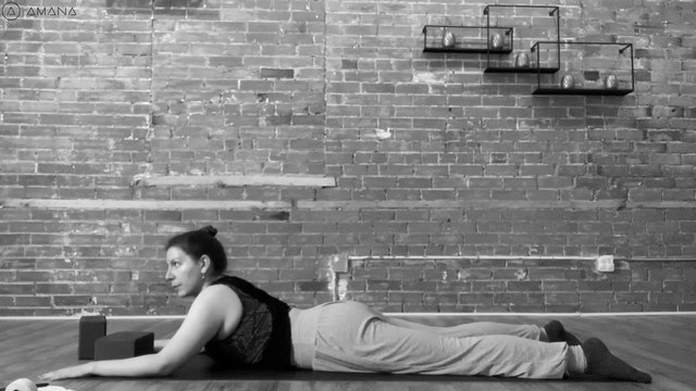 Yin Spinal Mobility Series with Cat - Backbends