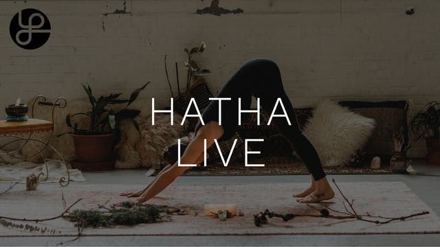Yoga Pearl Live 3/16: Hatha w/ Emily ...