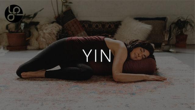 Yin at Yoga Pearl