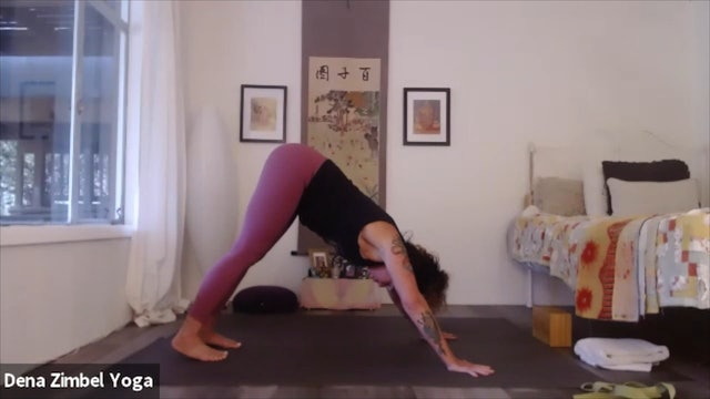 Progression towards Hanumanasana with Dena Zimbel