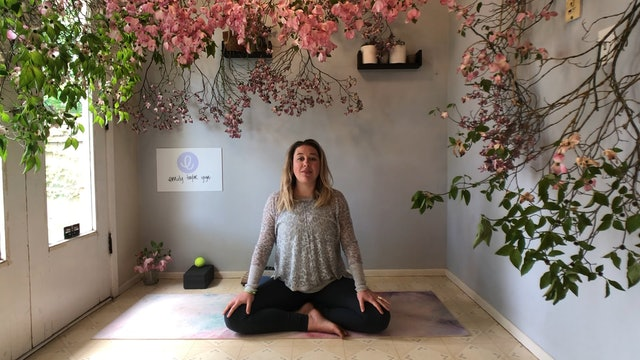 Body Scan Meditation with Emily Taylor