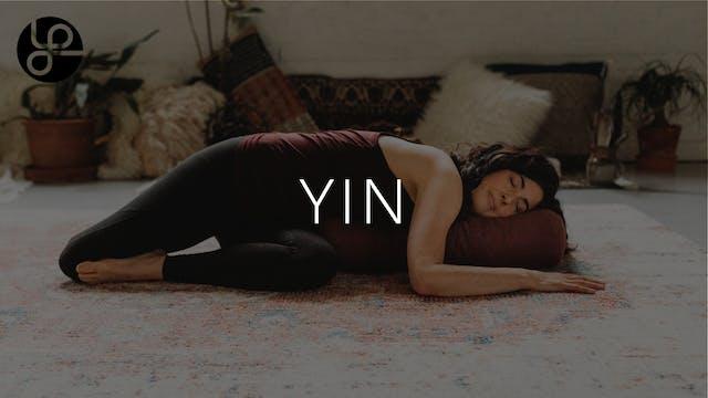 Yoga Pearl Live 11/25: Yin with Tami ...