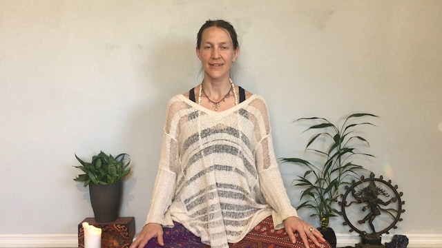 5 Element Meditation with Emily Dalsfoist