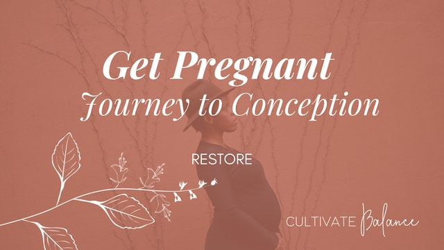 Get Pregnant | Journey to Conception