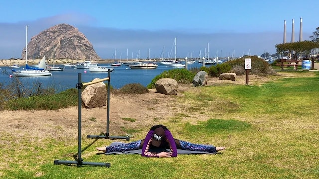 Morro Bay Arms & Back