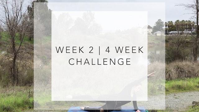 WEEK 2 | 4 Week Barre Body Challenge