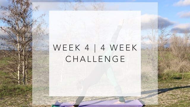 WEEK 4 | 4 WEEK Barre Body Challenge