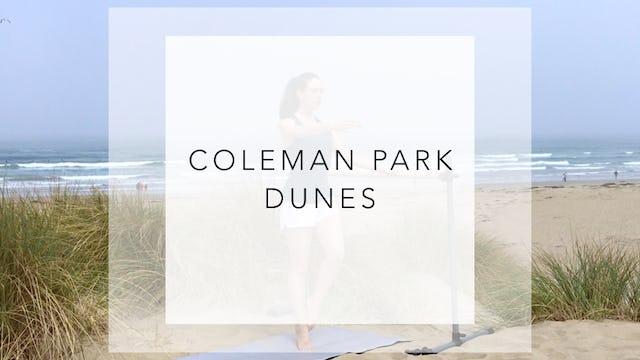 Coleman Park Dunes: 16 Minute Beach Bod