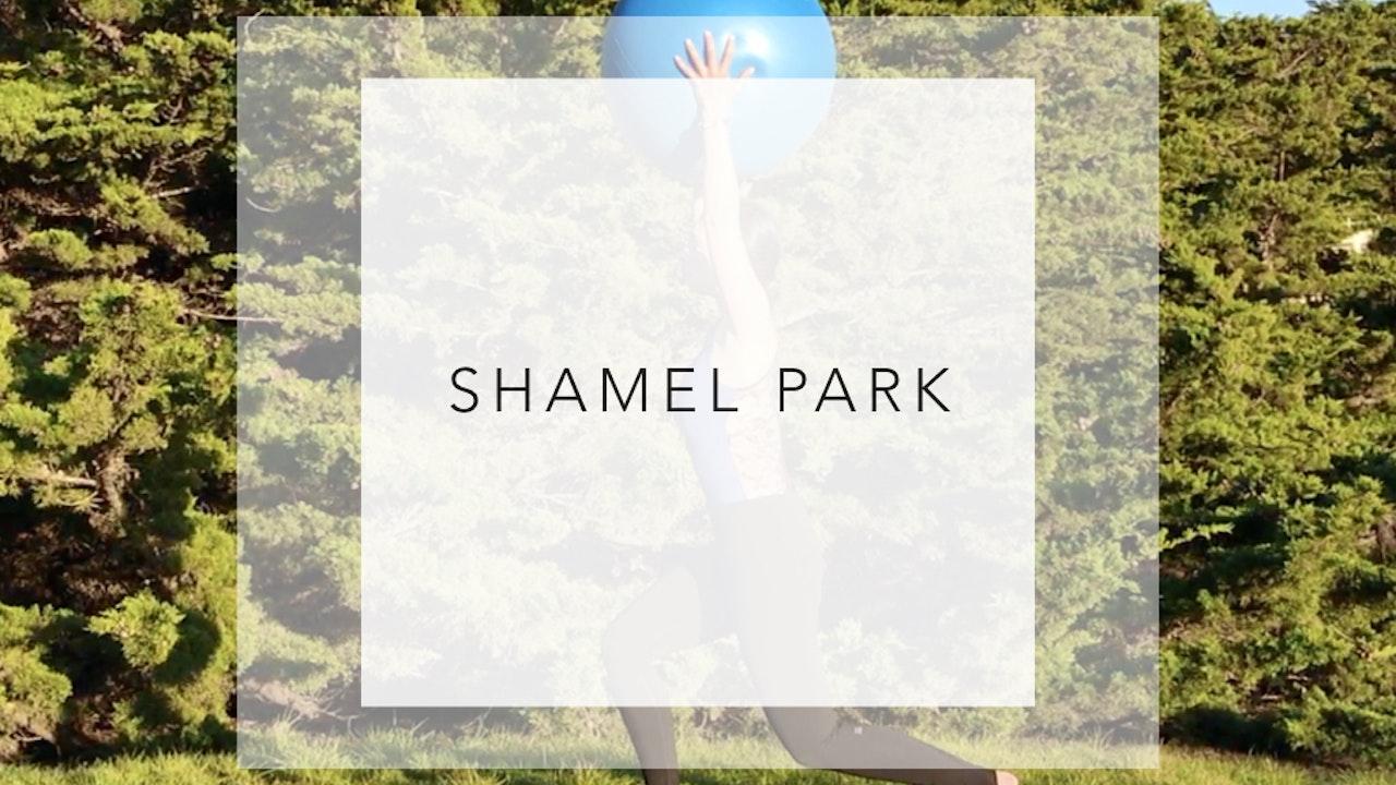 Shamel Park: 5 Minute Total Body Workout
